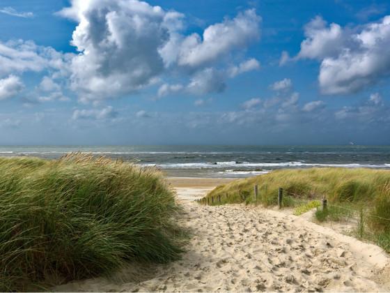 Texel Paal 18