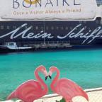 Unterwegs in der Karibik - Bonaire 2016